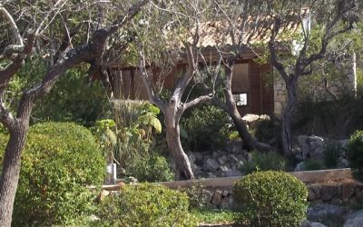 Pilates and Mindfulness Retreat: Mallorca June 2017